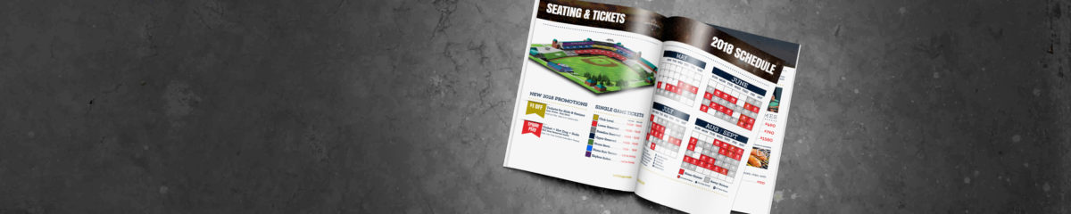 Saltdogs Ticket Guide